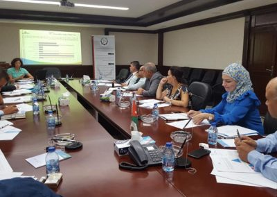 Review Meeting, Amman, August 2018