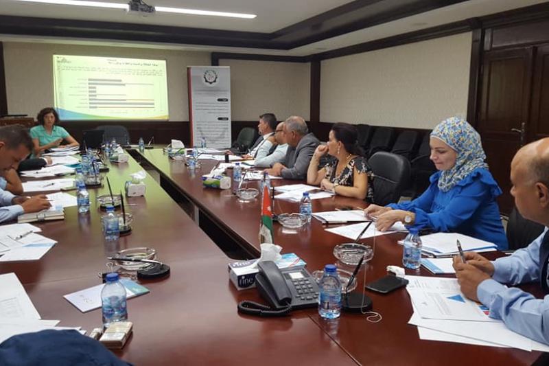 Review Meeting, Amman, August 2018