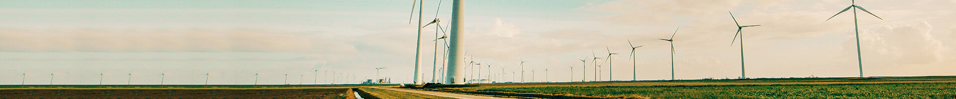 Header image - wind energy farm