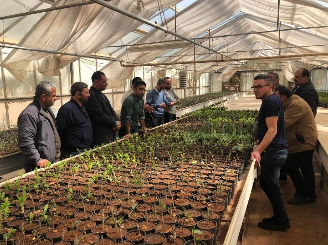 Agriculture Nursery Management Training in Faisal Nursery in Jerash, Jordan, 15-16/3/2020